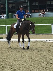 Sichtung WM Junge Dressurpferde am 7.6.2016 in Warendorf